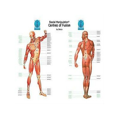 Fascial manipulation - Centers of fusion - Poster
