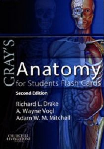 Grays Anatomy for Students Flash Cards