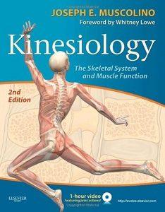 Kinesiology, Joseph E. Musculino
