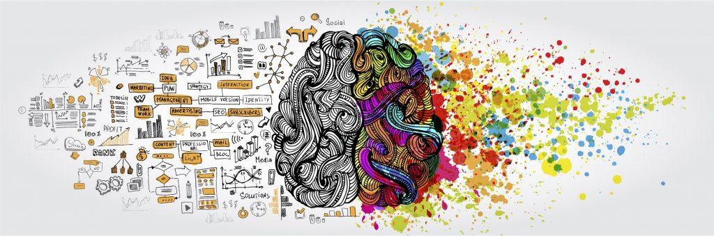 brain-1024x339.jpg