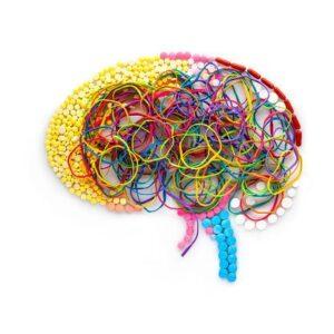 Νευροπλαστικότητα – Τι είναι και με ποιο τρόπο λειτουργεί;