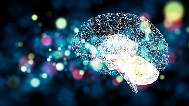 neuroplasticity-after-stroke.jpg